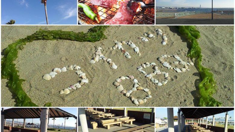 灼熱恋活BBQパーティー IN二色浜海浜緑地のアイキャッチ画像