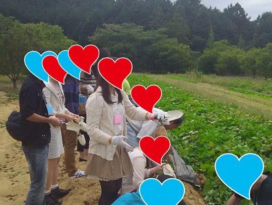 恋活屋台村INいずみふれあい農の里のアイキャッチ画像