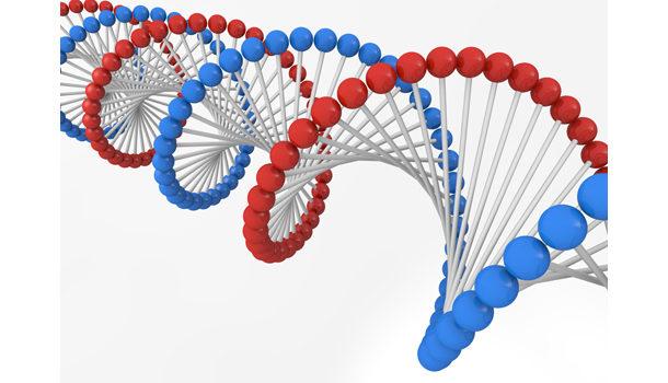 遺伝子レベルからの恋愛感 ~婚活パーティー・恋活パーティー選び編~のアイキャッチ画像